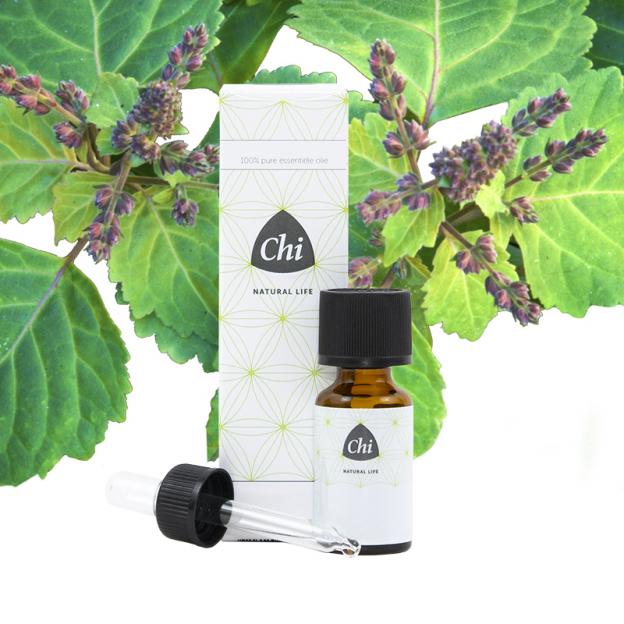 Patchouli etherische olie, Cultivar