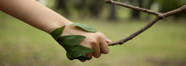 Chi & Duurzaamheid